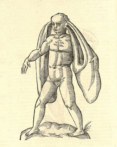16th-century-woodcut-of-monster-by-Aldronvandi-3