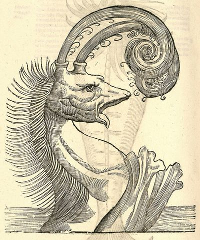 16th-century-woodcut-of-monster-by-Aldronvandi-4