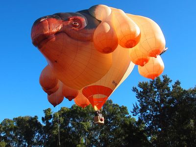 Skywhale_taking_off_May_2013